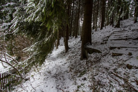 2015-01-25 Winterspaziergang 05