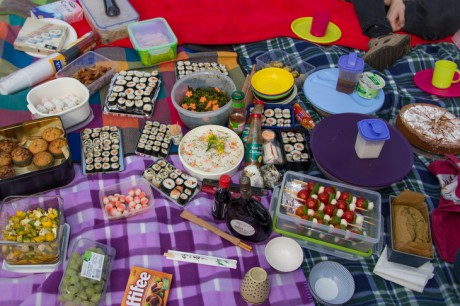 2015-04-25 Hanami feiern 06