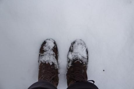 2016-01-17 Winterwanderung 06